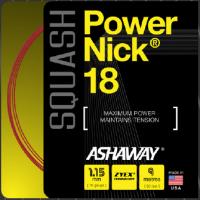Ashaway Squash Saite Powernick 18